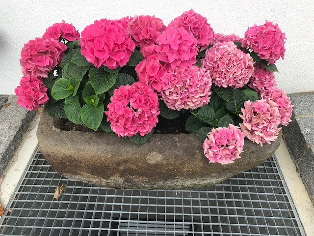 Steintrog Wassergefäß Pflanztrog 82 cm