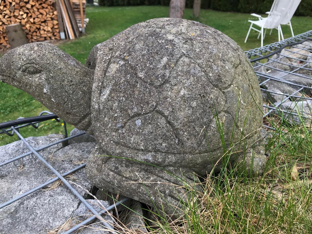 Steinskulpturen Schildkröte