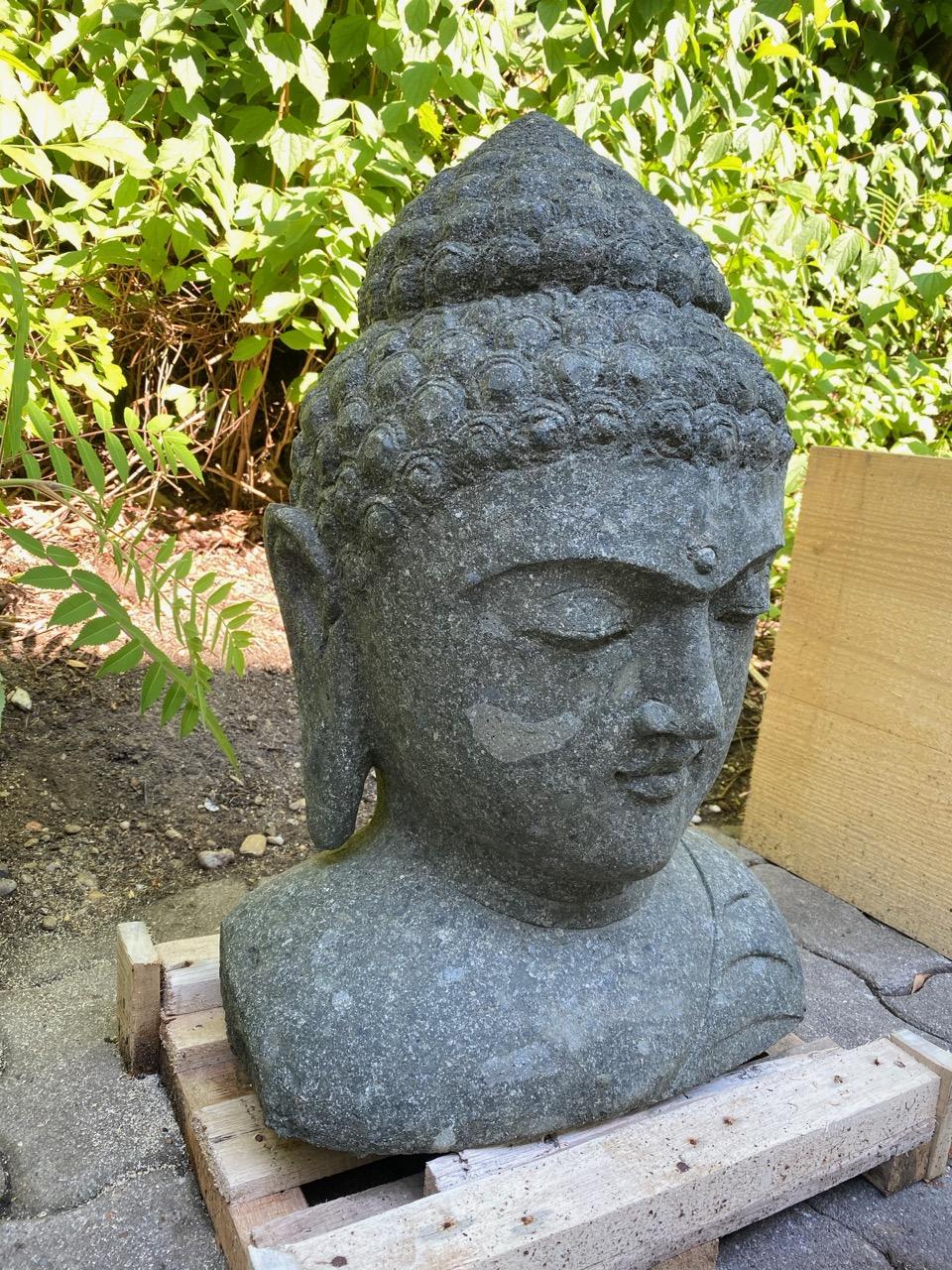 schöner Buddhakopf
