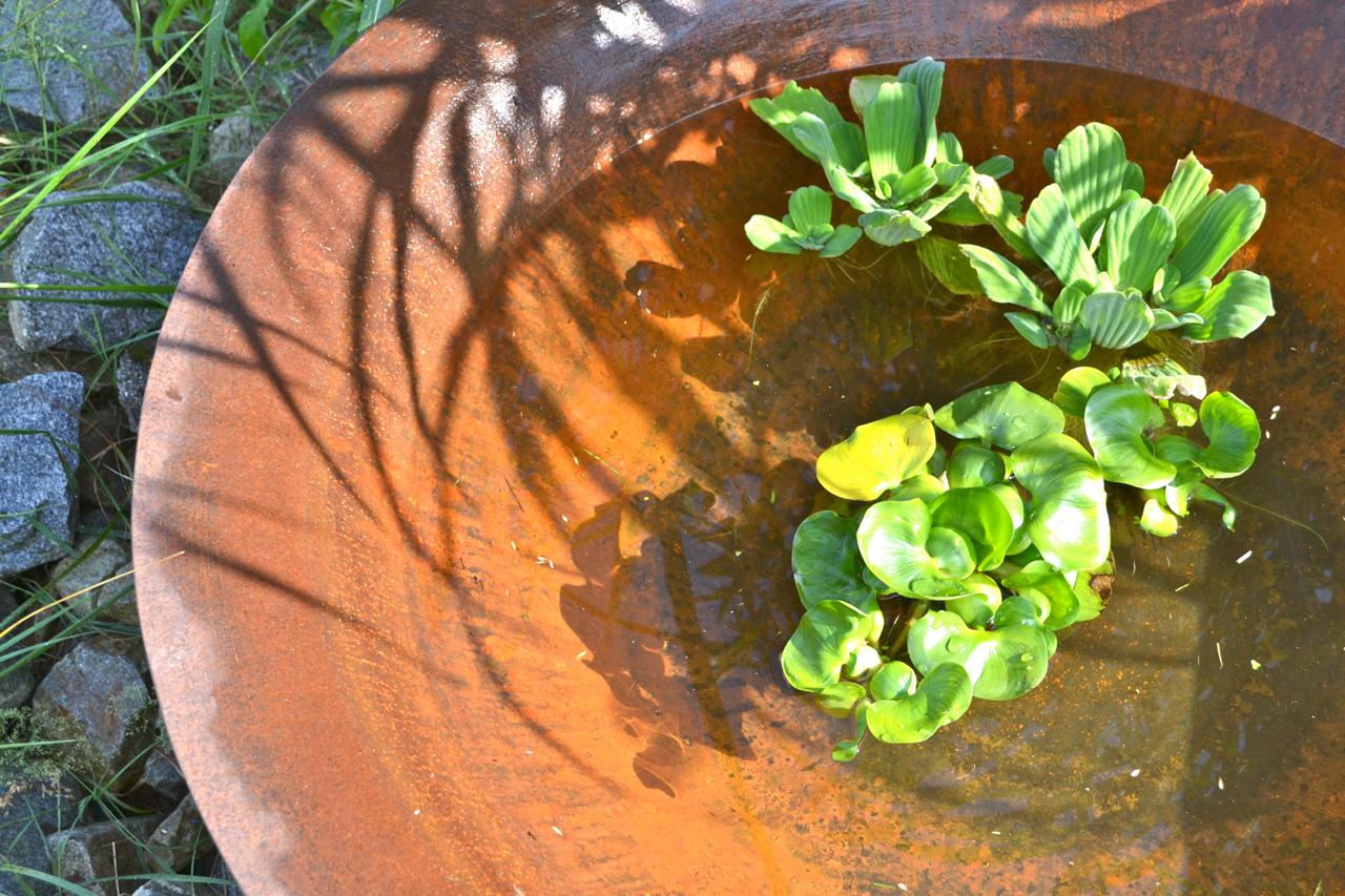 Eisenschale als Wassertrog  oder Pflanztopf für den Garten 110 cm