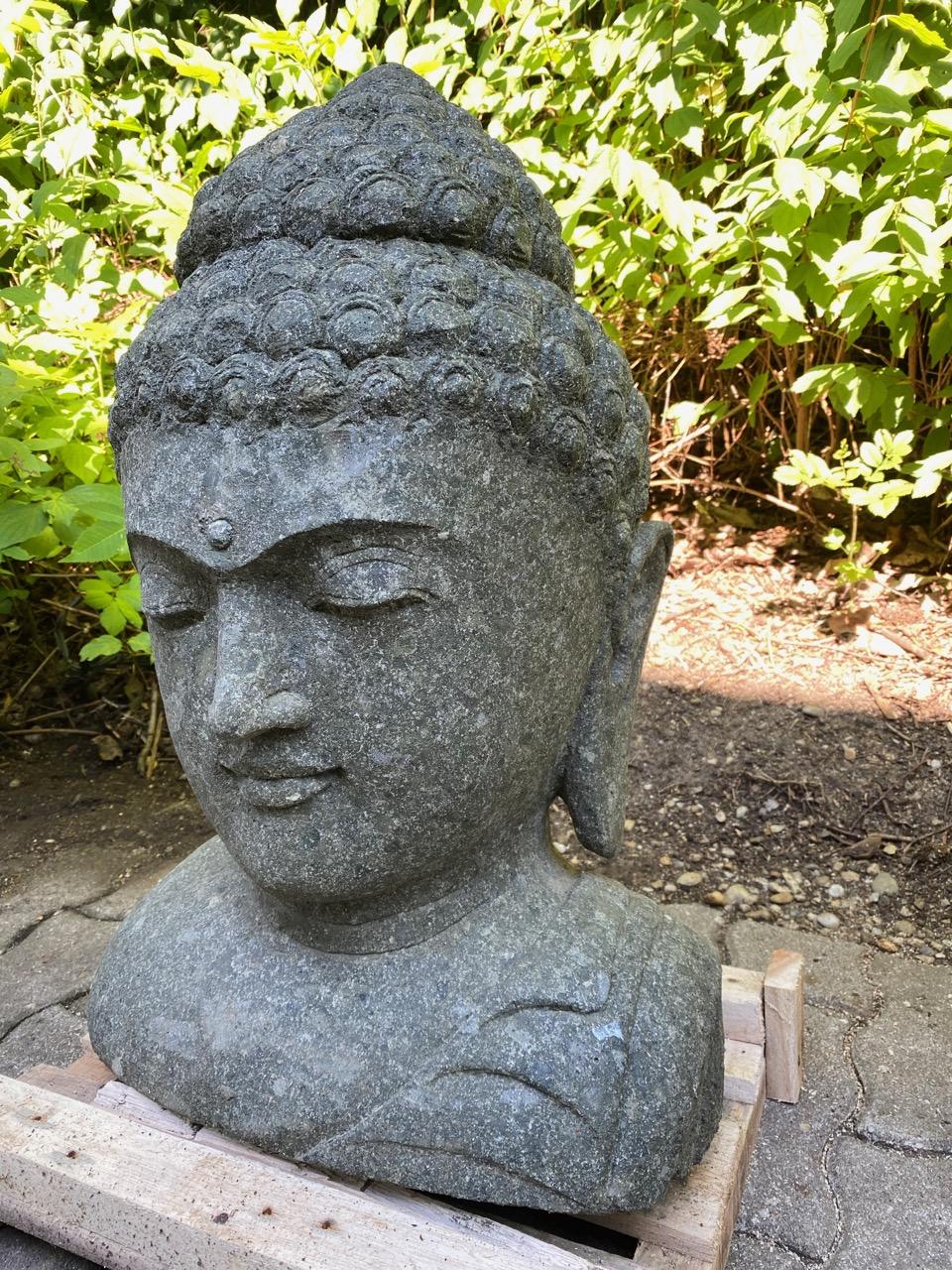 schöne Buddha Steinbüste