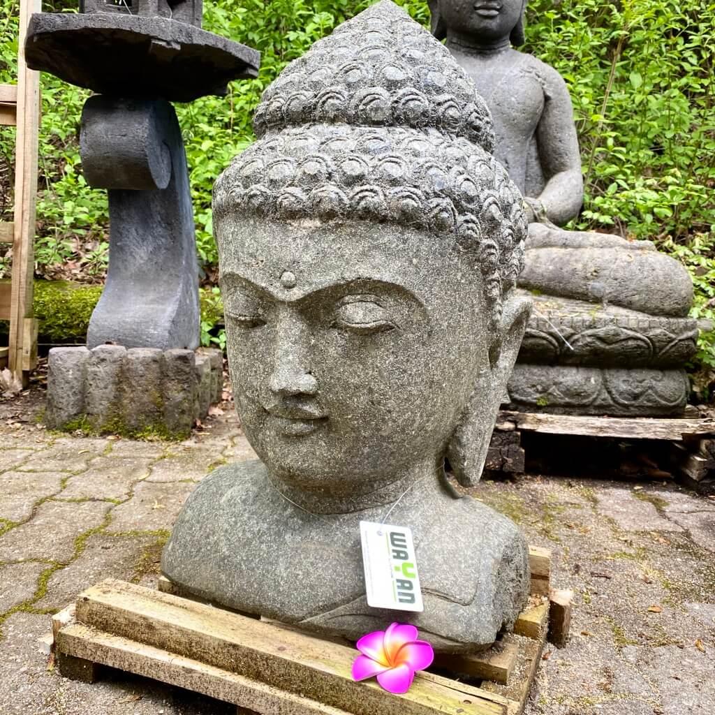 Buddhabüste als Geschenkidee 67 cm