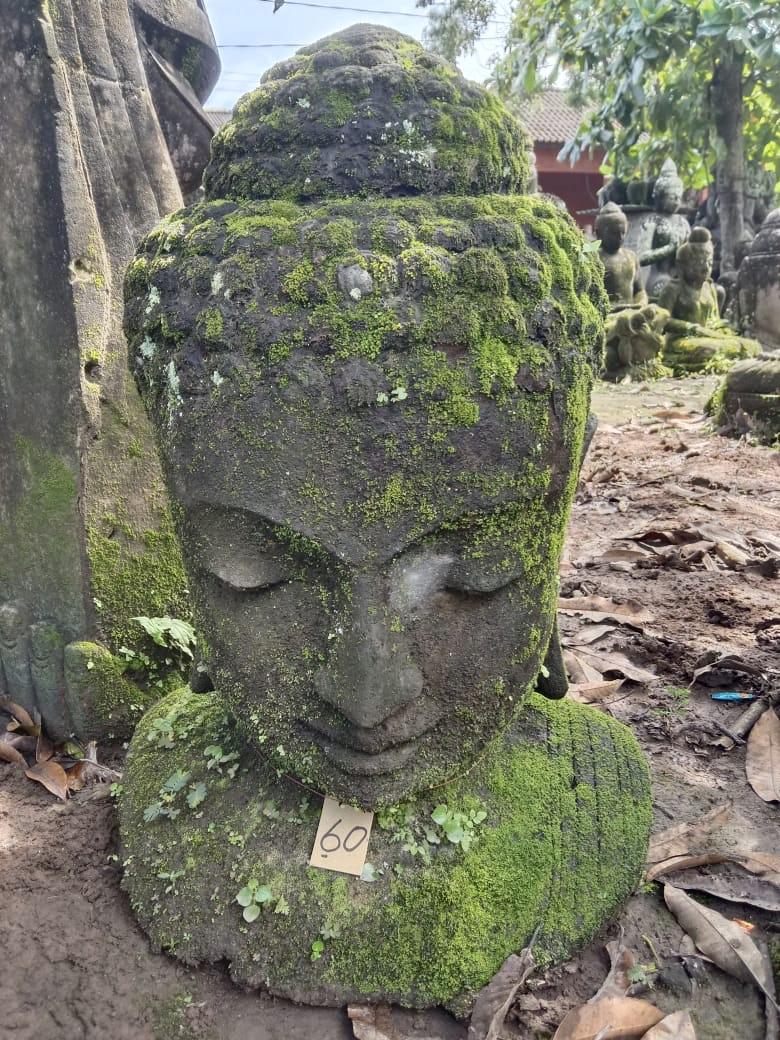 Monsoon Buddhabüste 75 cm